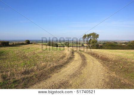 Stony Farm Track