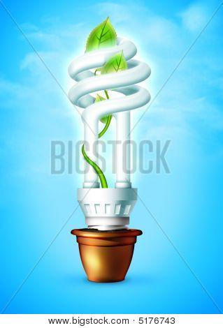 Lamp sky box leaf