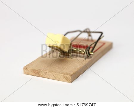 Mouse Trap with cheese on white background