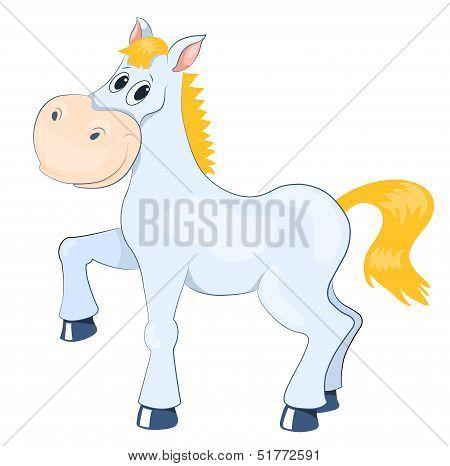 White mad horse