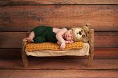 stock photo of innocence  - Portrait of a newborn baby boy wearing crocheted green overalls and bear hat - JPG