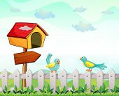 stock photo of bird fence  - Illustration of a bird house with an arrow board and birds above the fence - JPG