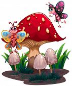 Illustration of the butterflies flying near a giant mushroom on a white bakcground