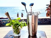 Bar Accessories With Inox Shaker