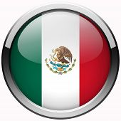 Mexico Flag Gel Metal Button