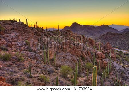 sunrise in the sonoran desert, hdr image