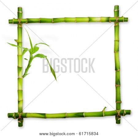 Bamboo frame made of stems isolated on white background.