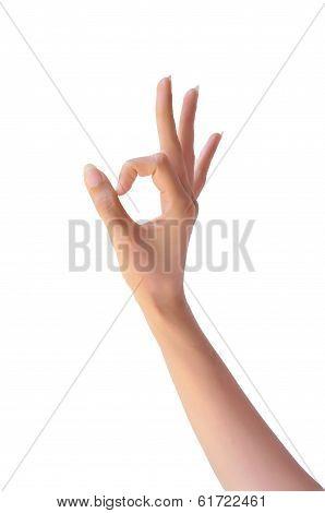 Ok. Gesture sign