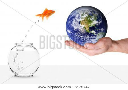 Goldfish Jumping Out Of Fishbowl And Into Planet Earth