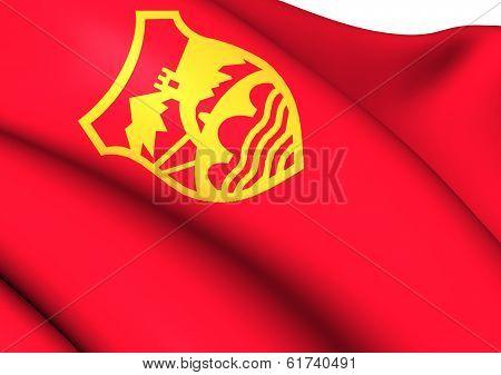 Flag Of Skopje