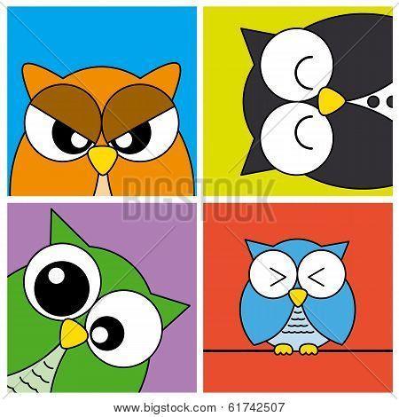 Funny Owls card