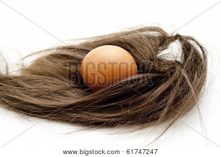 Chickens egg with hairpiece