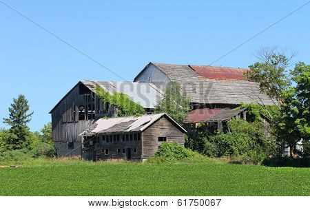 Abandoned Farmhouse, Canada