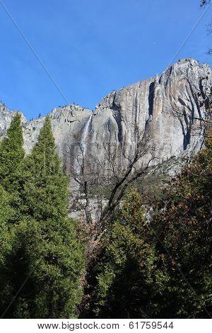 Yosemite National Park Landscape