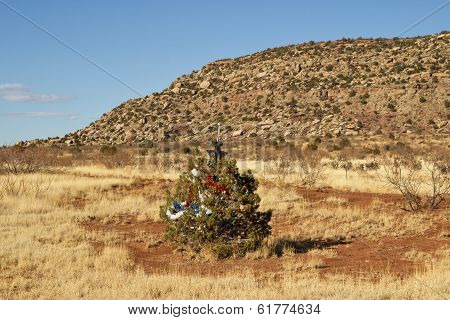 Decorated Christmas tree along a roadside