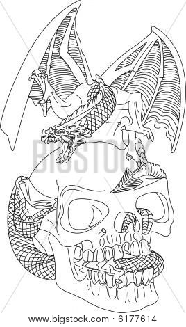 Skull With A Dragon