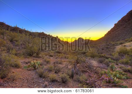 sunrise over the sonoran desert in arizona, hdr image