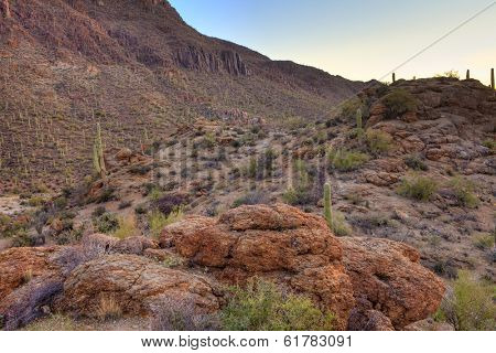 hdr image of sonoran desert just before dawn
