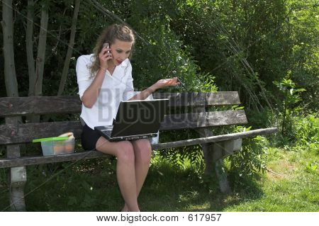 Pretty Businesswoman In The Park