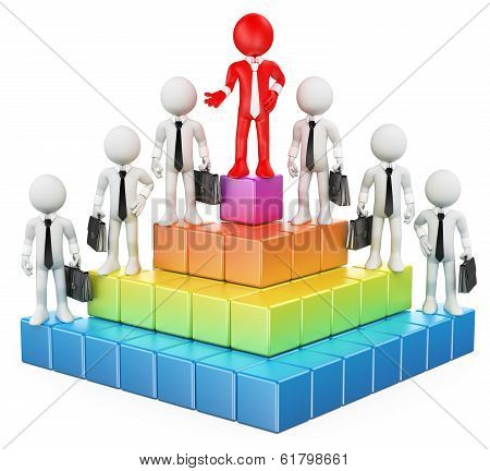 3D White People. Business Hierarchy