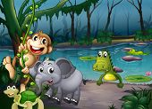 picture of crocodile  - Illustration of the animals playing at the forest near the pond with crocodiles - JPG