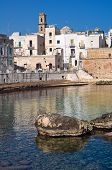 stock photo of fortified wall  - Perspective of the fortified wall of Monopoli - JPG