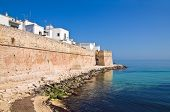 stock photo of fortified wall  - Fortified wall of Monopoli - JPG