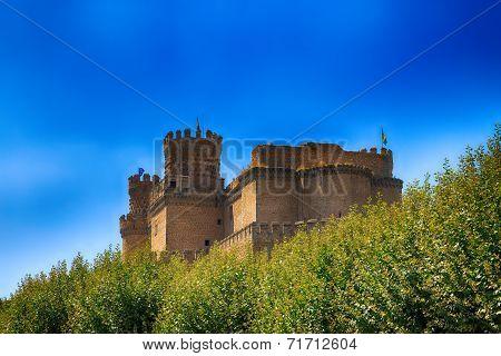 Beautiful Medieval Castle - Manzanares (spain)