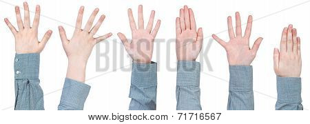Set Of Female Palms With Five Fingers