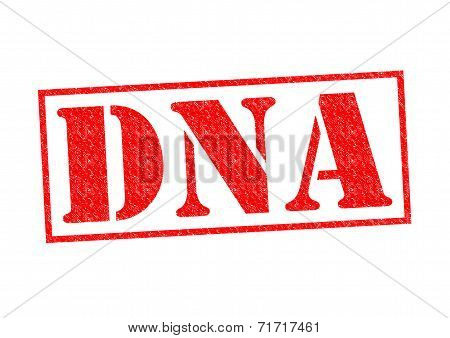Dna Rubber Stamp
