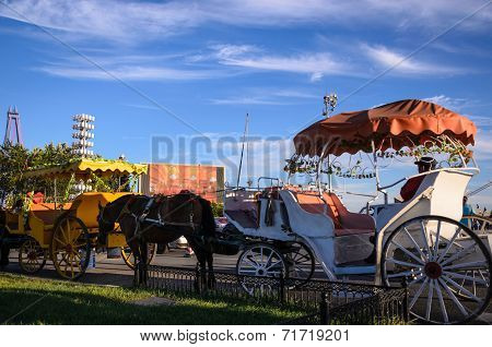 Horse Carriage Rider In Xinghai Park