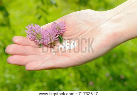 Homeopathic lactose sugar globules on hand with flowers, outdoors.