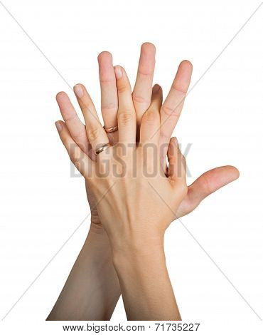 Wedding Rings On The Fingers Of Male And Famale Hands
