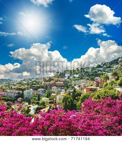 Mediterranean Landscape With Azalea Flowers