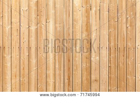 Uncolored Wooden Wall With Nails. Background Photo Texture