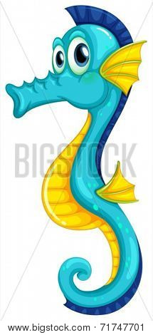 Illustration of a blue seahorse