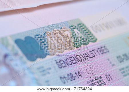 visa in a passport macro