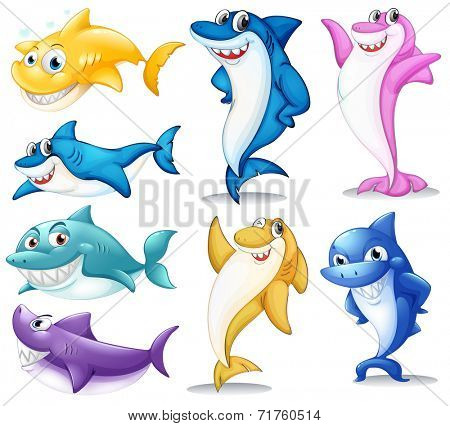 Illustration of a group of colorful sharks on a white background