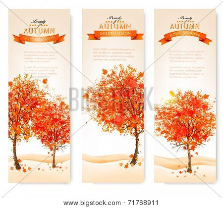 Three autumn abstract banners with colorful leaves and trees. Vector illustration.