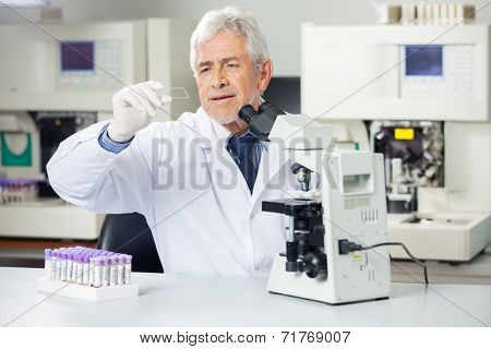 Senior male scientist analyzing microscope slide in medical lab