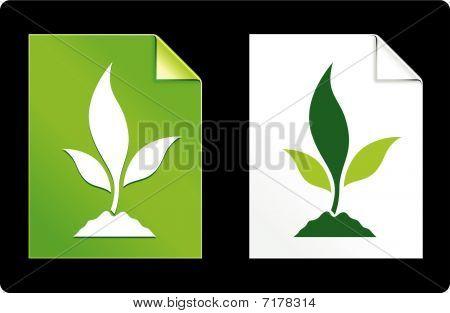 Planta em papel conjunto
