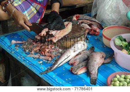Filleting Fresh Snakehead Fish