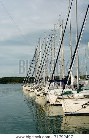 Sailboats in Harbor