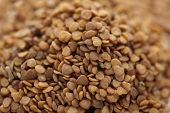 stock photo of ashwagandha  - Collection of dry small Ashwagandha seed (Withania somnifera).