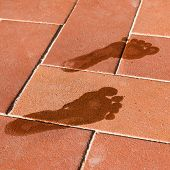 picture of wet feet  - woman wet foot imprint on red tile floor outdoor near swimming pool
