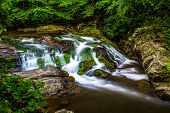 foto of gatlinburg  - Peaceful Smoky Mountain stream along the Roaring Fork Motor Nature Trail - JPG
