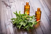 stock photo of peppermint  - Fresh mint and aroma oil with peppermint on wooden background - JPG