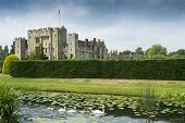 foto of hever  - Swans swimming in the grounds of the famous Hever castle in Kent - JPG