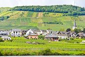stock photo of moselle  - vineyards on hills and Ellenz Poltersdorf village on Moselle riverbank Germany - JPG