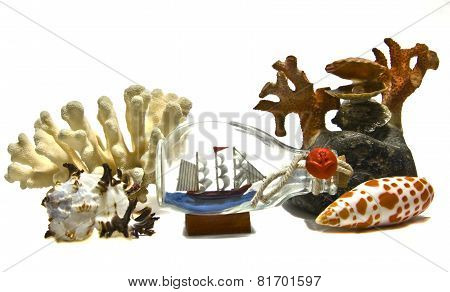 Corals, Shells And Little Ship In Bottle